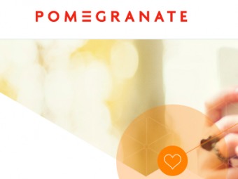 T.Y working with corporate client Pomegranate